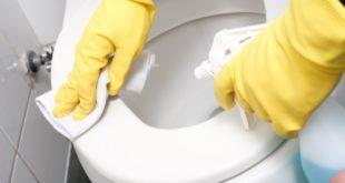 شركة تنظيف موكيت